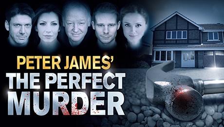 The Perfect Murder: Season 2