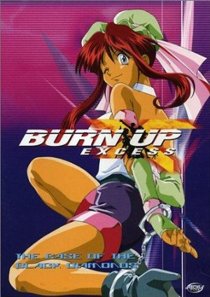 Burn Up Excess (sub)