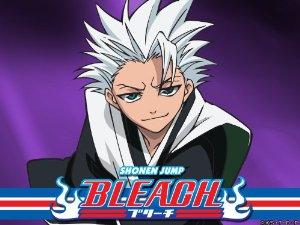 Bleach: Season 13
