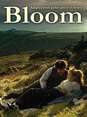 Bloom 2003