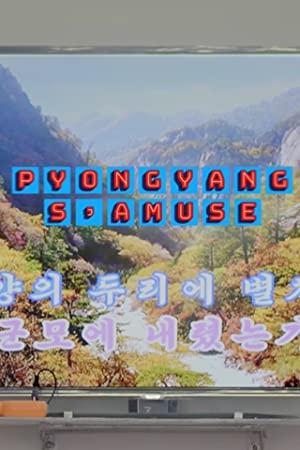 Have Fun In Pyongyang
