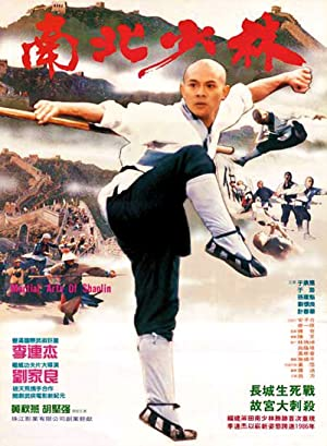 Martial Arts Of Shaolin