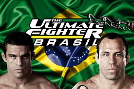 The Ultimate Fighter Brazil: Season 2