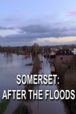 Somerset: After The Floods