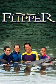 Flipper: Season 2